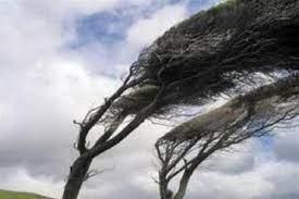 تداوم وزش باد در استان تا عصر هشتم فروردین ماه